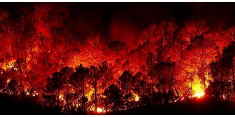 حريق لبنان اليوم